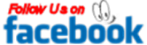 Follow Us on Facebook Button